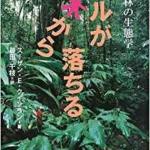サルが木から落ちる 熱帯林の生態学