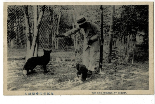 大沼湖畔の養狐場