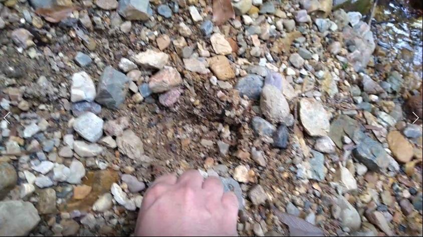 川岸にあった足跡