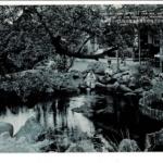 伊東温泉 浄ノ池
