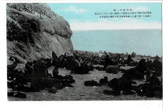 海豹島の一部